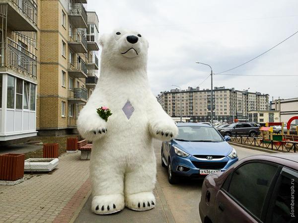 белый медведь дарит цветы