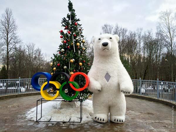 Белый медведь на олимпиаде в Спб Петербурге Питере