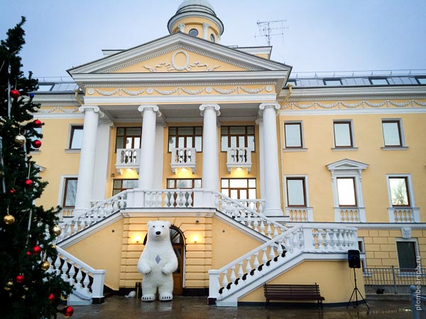 Белый медведь на работе в Репино