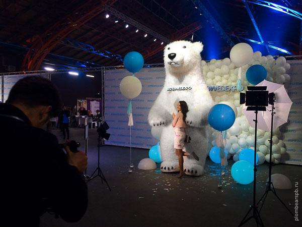 медведь на свадебной выствке спбведэкспо