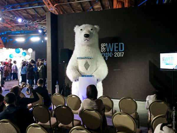 белый медведь и лекция как развлекать людей