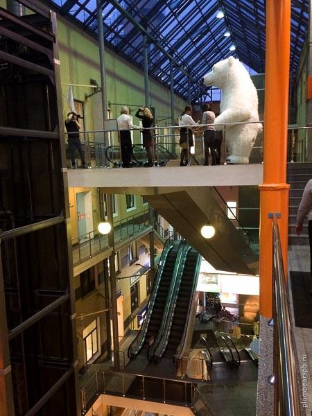 белый медведь в ЦНТИ встреча гостей аниматор Спб