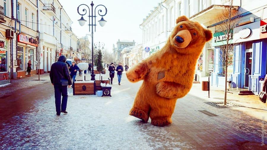 бурый медведь Plombear в Симферополе Крыму