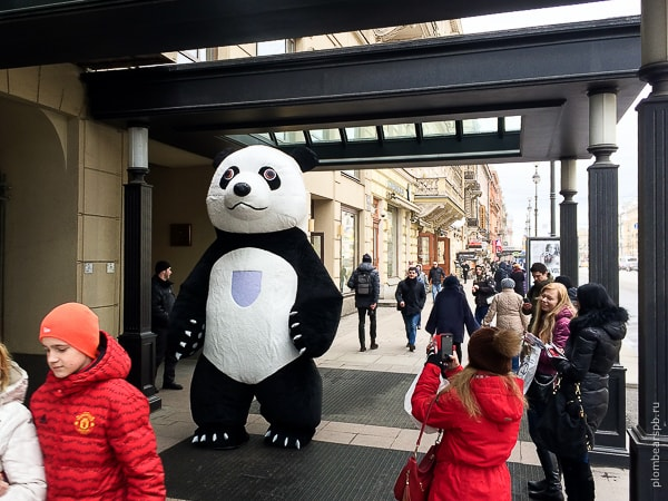 огромная черно белая панда на выставке королевство свадеб на невском в Спб