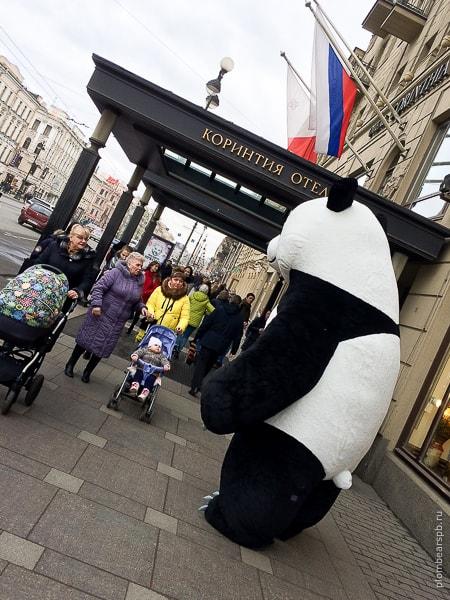 Огромная панда фотографируется с жителями Петербурга на Невском