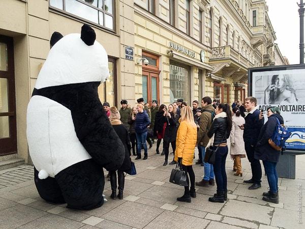 Панда не Невском проспекте в центре Спб
