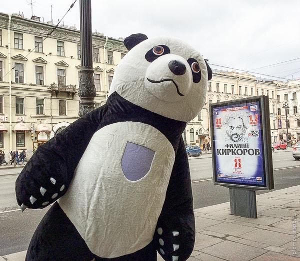 Черно белая панда и Филипп Киркоров